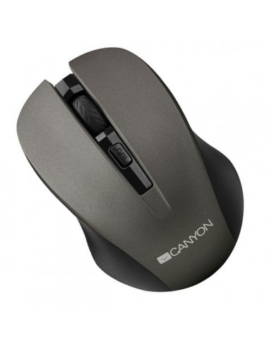 Mouse Canyon CNE-CMSW1, wireless, grey